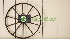 Greenstock: A Prime Destination For Stock Photos