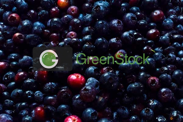 Fruit blueberries