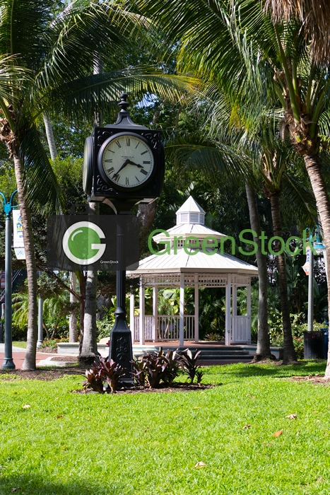 Tall Clock in the park