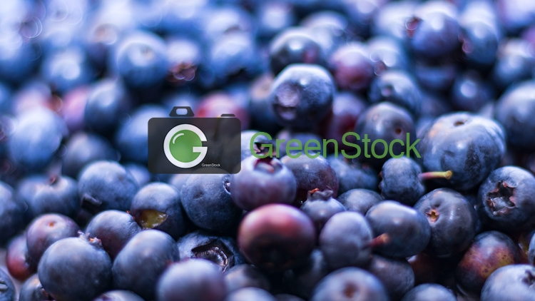 Fruit_blueberries2